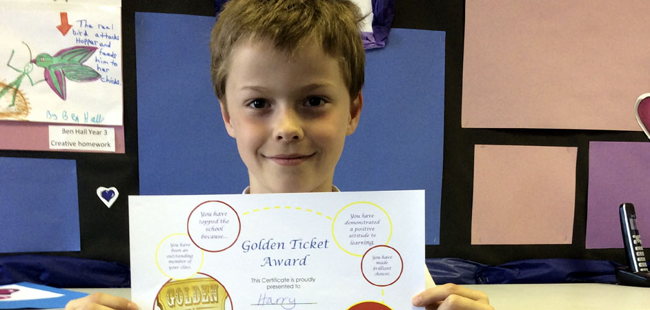 KS2 Golden Ticket Winner Harry